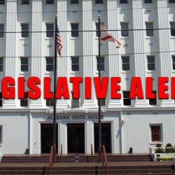 Take Action – Call Your Legislator this weekend